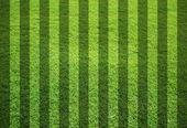 Blank grass field — Stock Photo