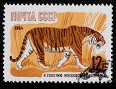Selo postal. tigre, 1964 — Fotografia Stock