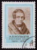 Post-stämpel. a. v. koltsov, 1969 — Stockfoto