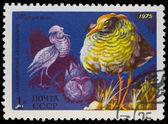 Postal stamp. Ruff, 1975 — Stock Photo