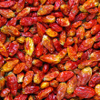 Dried Chili Peppers — Stock Photo