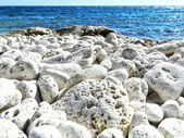 Stones on the shore — Stock Photo