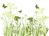Green background with grass and butterflies — Stock Vector