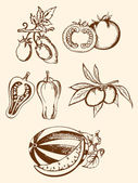 Set of vintage vegetable icons — Stock Vector