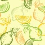 Citrus seamless pattern — Stock Vector