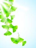 цветочный фон с листьями — Cтоковый вектор
