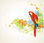 Summer background with ornament and parrot — Stock Vector