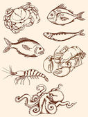 Hand drawn seafood icons — Stock Vector