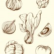 Vintage vegetables — Stock Vector #7460235