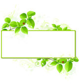 Green banner — Stock Vector