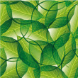 Leaves seamless pattern — Imagen vectorial