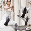 Bride doves — Stock Photo #7332690