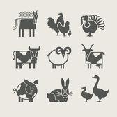 Animal domestique définie icône — Vecteur