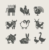 Home animal set icon — Stok Vektör