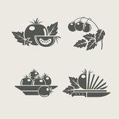 Tomate establece iconos — Vector de stock