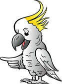 Hand-drawn Vector illustration of an Sulphur Crested Cockatoo — Stock Vector