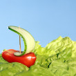 Stock Photo: Boat, made of fresh tomato and cucumber
