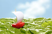 Boat, made of fresh strawberry — Stock Photo