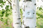 Concepto ecológico, que simbolizan las energías renovables, bio energía — Foto de Stock