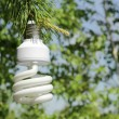 Energy saving light bulb on a branch of pine - Stock Photo