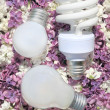 Light bulbs, lying on the flowers of lilac — Stock Photo