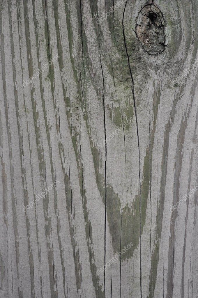 Texture of wood — Stock Photo #6874667