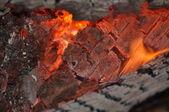 Fire. — Stock Photo