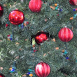 Texture  of Xmas tree. — Stock Photo