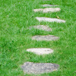 Stepping stones in a meadow — Stock Photo
