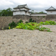 Wall around Osaka castle — Stock Photo