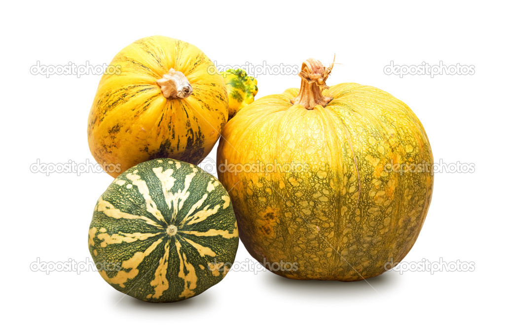 Pumpkins Isolated on a White Background — Stock Photo #6928302