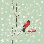 Winter background with bullfinch — Vector de stock