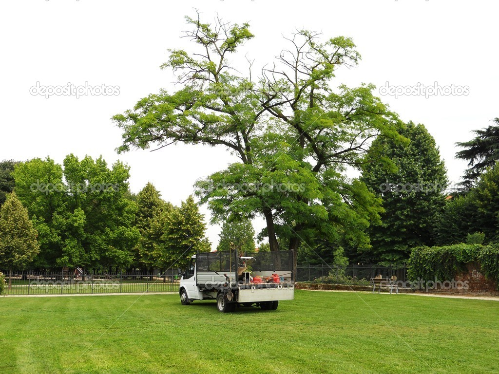 Gardener's truck and equipment on freshly cut grass — Stock Photo #6850316
