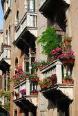 Windows balkong med blommor — Stockfoto