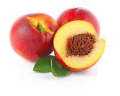Three fresh nectarines — Stock Photo