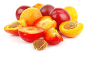 Apricots and plums — Stock Photo