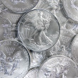 Stock Photo: Uncirculated AmericSilver Eagle Coins