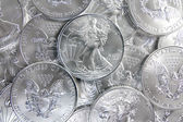 Uncirculated American Silver Eagle Coins — Stock Photo