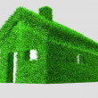3D illustration of a green house with grass — Stock Photo #6816450