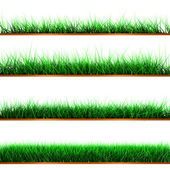 Samples of green color grass — Stock Photo