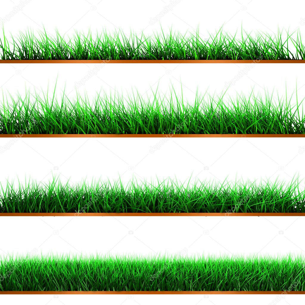 Green color grass illustration isolated on white — Stock Photo #6886862