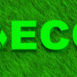 Eco word over green grass — Stock Photo