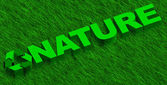 Nature word over green grass — Stock Photo