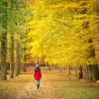 Walking in the autumn park - Stock Photo