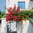 House in Greece — Stock Photo #7078583