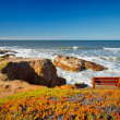 Stock Photo: Pacific Ocecoast