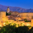 Alhambra palace, Granada, Spain — Stock Photo #7405760