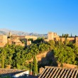 Alhambra palace, Granada, Spain — Stock Photo #7801952