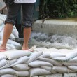 Stock Photo: Sandbags