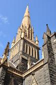Catolic cathedral — Stockfoto